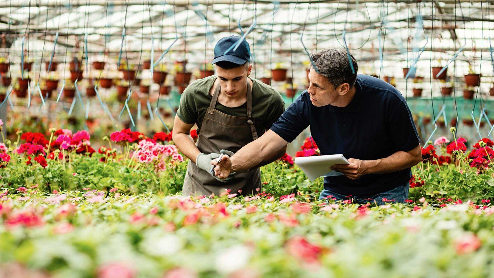 werkinstructies oost europese medewerkers